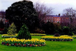 Dublin_-_Merrion_Square_landscaping_-_geograph.org.uk_-_1494282